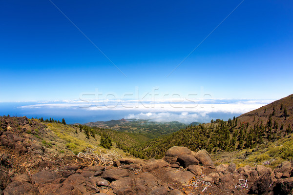 La Palma Caldera de Taburiente sea of clouds Stock photo © lunamarina