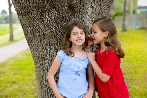 kid friend girls whispering ear playing in a park tree Stock photo © lunamarina