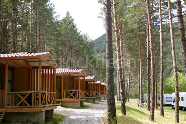 Forest wooden cabins in a mountain camping Stock photo © lunamarina