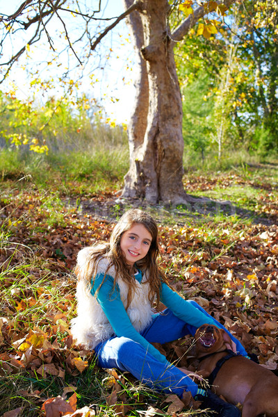 Autumn kid girl with pet dog relaxed in fall forest Stock photo © lunamarina