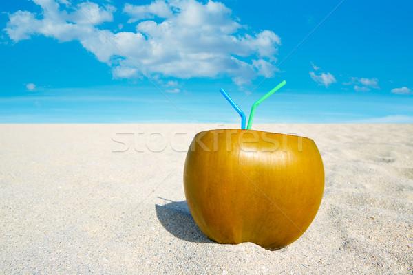 マイアミ 南 ビーチ ココナッツ フロリダ ドリンク ストックフォト © lunamarina