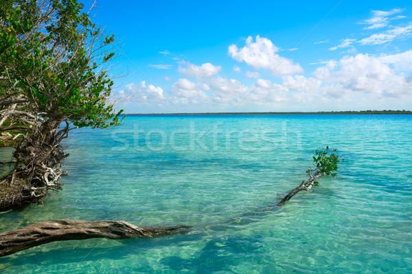 México praia céu água fundo verão Foto stock © lunamarina