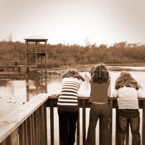女の子 見える 公園 湖 テキサス州 子供 ストックフォト © lunamarina