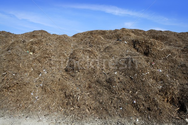 composting ecological compost outdoor warehouse Stock photo © lunamarina
