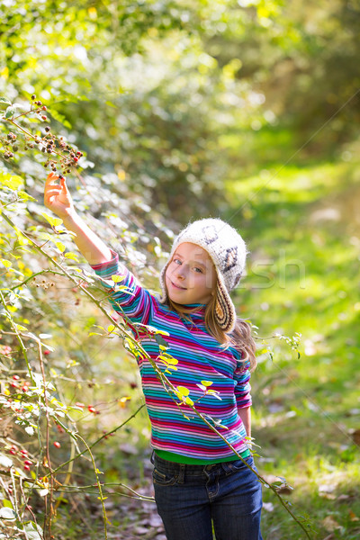 kid winter girl picking mulberry berries in the forest Stock photo © lunamarina
