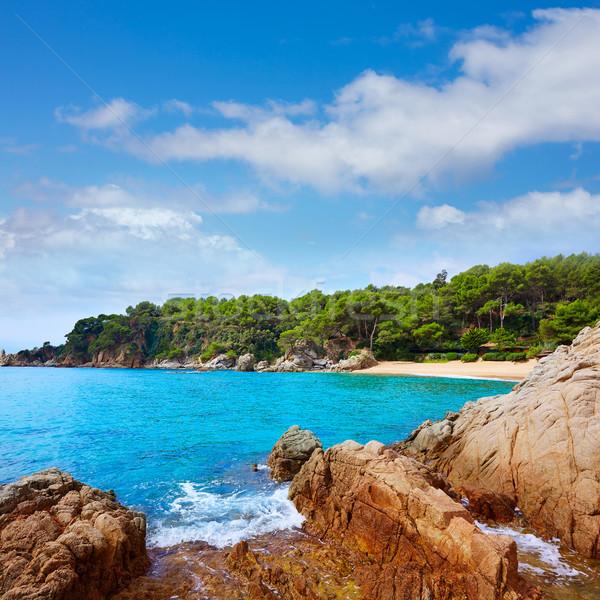 Cala Treumal beach Lloret de Mar Costa Brava Stock photo © lunamarina