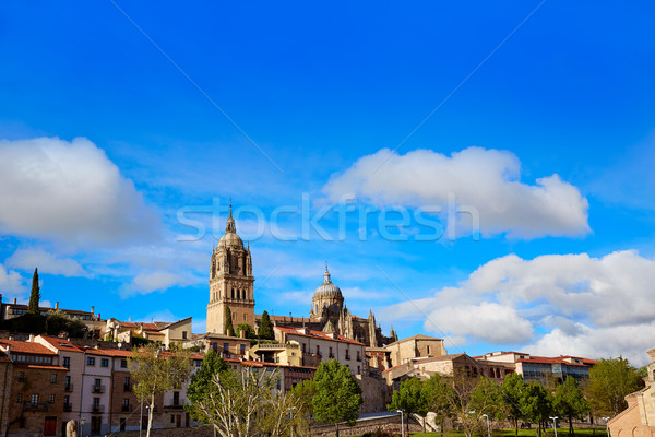 Ufuk çizgisi katedral İspanya gökyüzü şehir mavi Stok fotoğraf © lunamarina