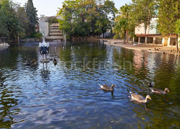 Parque estanque Valencia España agua primavera Foto stock © lunamarina