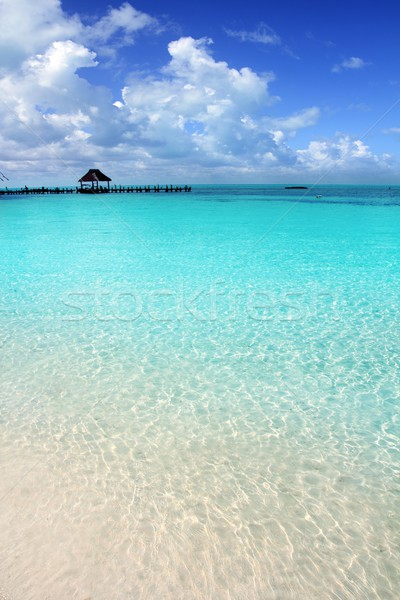 Caribbean tropical beach cabin pier Contoy island Stock photo © lunamarina