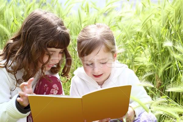 tow little sister girls reading book spikes garden Stock photo © lunamarina
