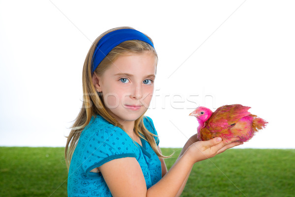 breeder hens kid girl rancher farmer with chicken chicks Stock photo © lunamarina