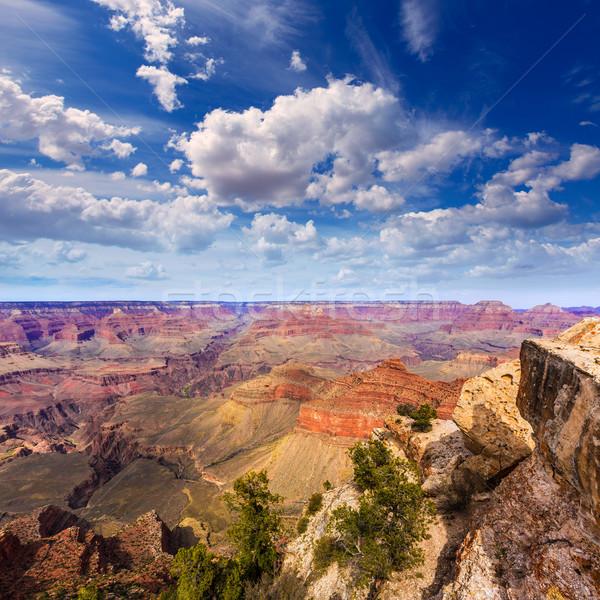 Arizona Grand Canyon park anne nokta amfitiyatro Stok fotoğraf © lunamarina