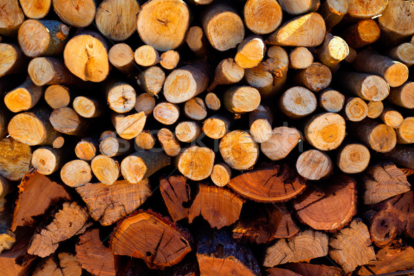 firewood stacked fire wood different sizes Stock photo © lunamarina