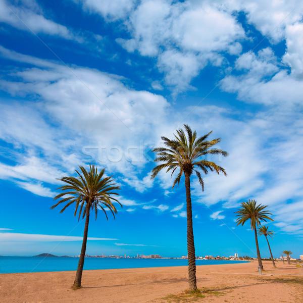 Plaży manga krajobraz morza ocean niebieski Zdjęcia stock © lunamarina