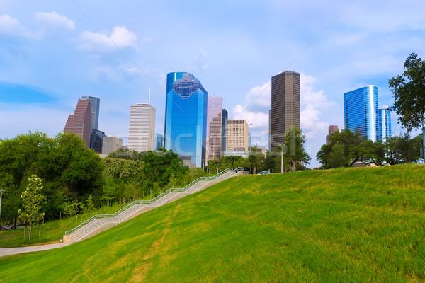 スカイライン 公園 テキサス州 空 通り 木 ストックフォト © lunamarina