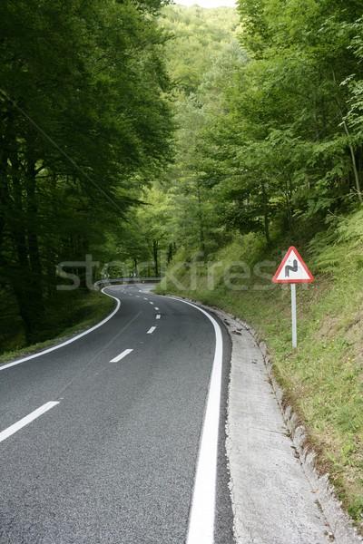 Asphalt winding curve road in a beech forest Stock photo © lunamarina
