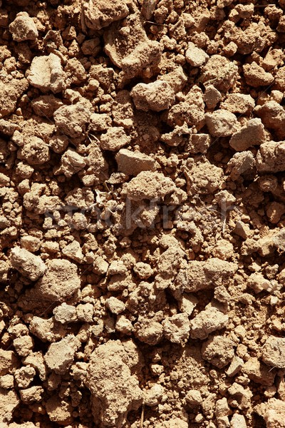 Clay red agriculture textured soil Stock photo © lunamarina