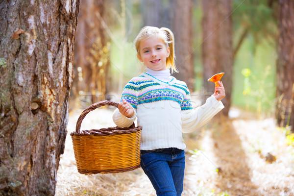 kid girl searching chanterelles mushrooms with basket in autumn Stock photo © lunamarina