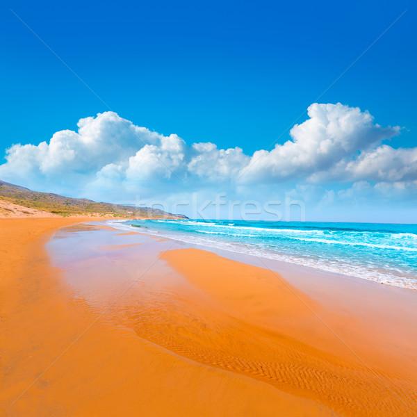 Strand park manga la landschap zee Stockfoto © lunamarina