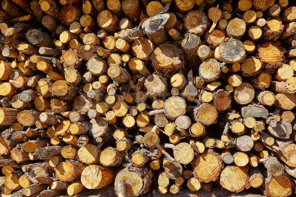 Yakacak odun yangın model doku İspanya Stok fotoğraf © lunamarina