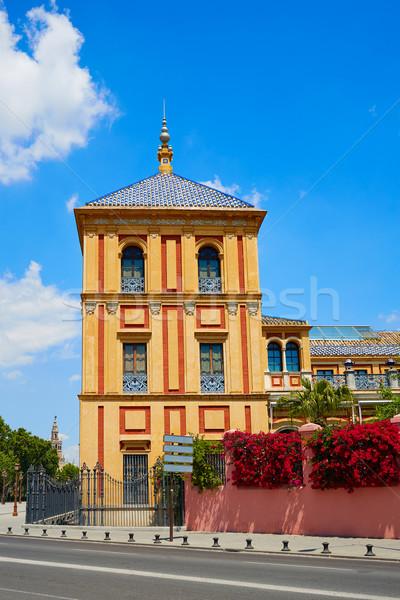 Seville Palacio de San Telmo Andalusia of Spain Stock photo © lunamarina