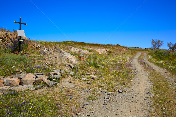 Via de la Plata way in Extremadura Spain Stock photo © lunamarina