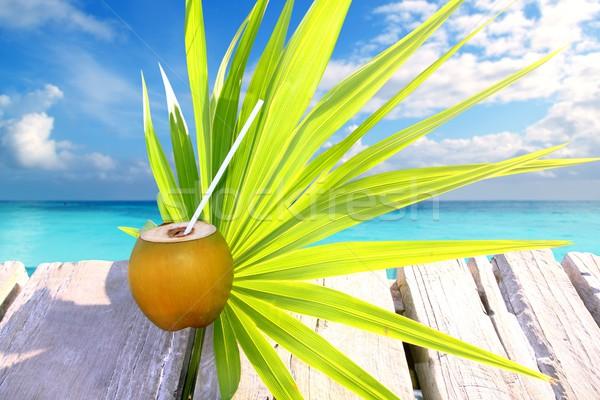 Kókusz friss Karib tenger móló pálmalevél Stock fotó © lunamarina