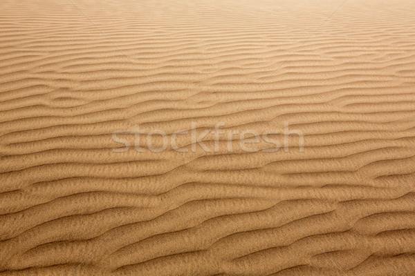 Deserto sabbia texture sole Foto d'archivio © lunamarina