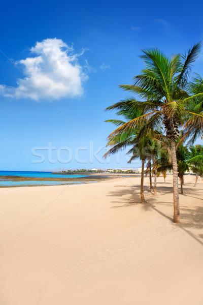 Stock photo: Arrecife Lanzarote Playa Reducto beach palm trees