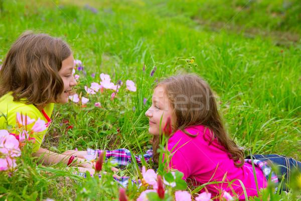счастливым близнец сестра девочек играет весенние цветы Сток-фото © lunamarina