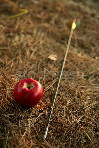 Metáfora maçã vermelha seta floresta textura comida Foto stock © lunamarina