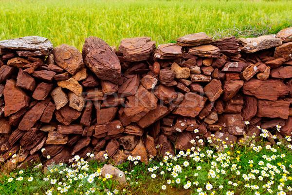 Masonry stonewall in spring with flowers Menorca Stock photo © lunamarina