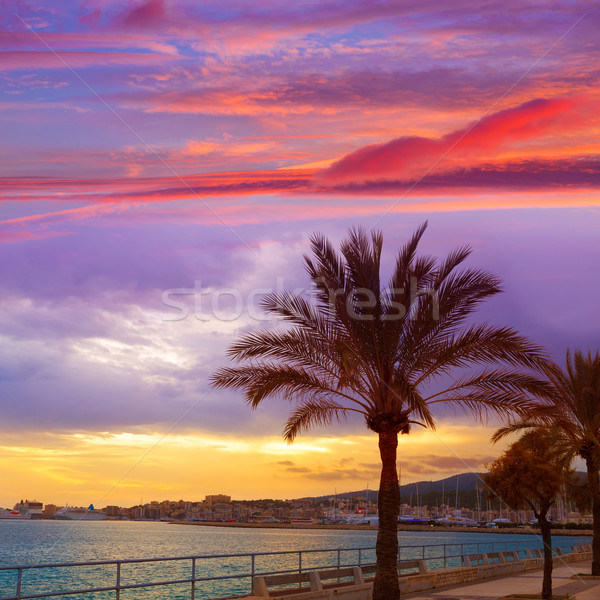 Palma de Mallorca sunset at port in Majorca Stock photo © lunamarina