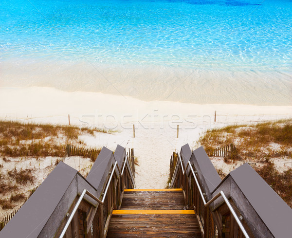 Destin beach in florida ar Henderson State Park Stock photo © lunamarina
