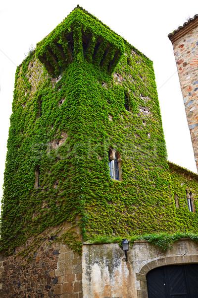 Caceres Torre del Sande tower in Spain Stock photo © lunamarina