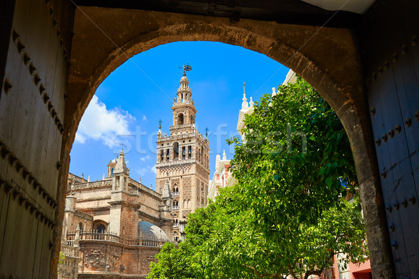 Seville cathedral Giralda tower from Alcazar Stock photo © lunamarina