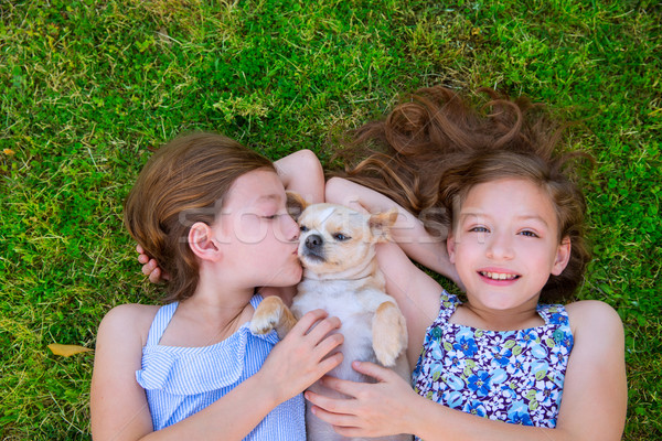 twin sisters playing with chihuahua dog lying on lawn Stock photo © lunamarina