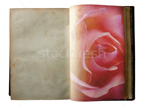 Stock photo: Rose printed on the pages of an open old book