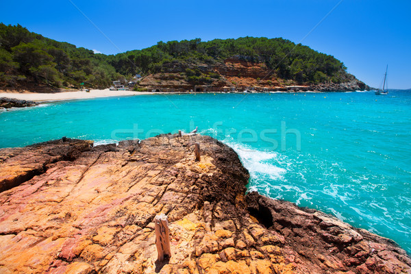 Ibiza cala Salada in san antonio Abad at Balearic Stock photo © lunamarina