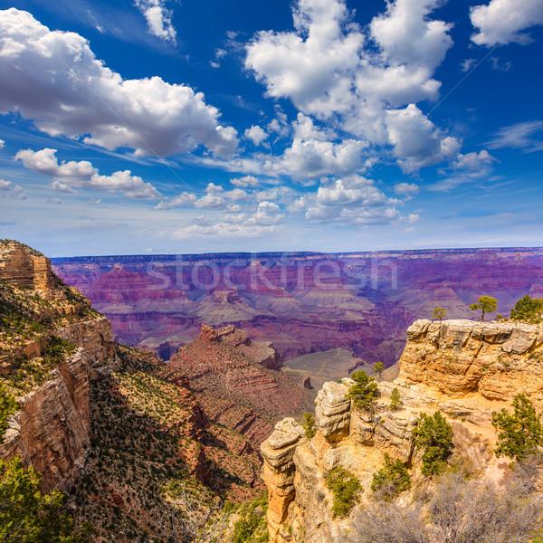Arizona Grand Canyon parque mãe ponto anfiteatro Foto stock © lunamarina