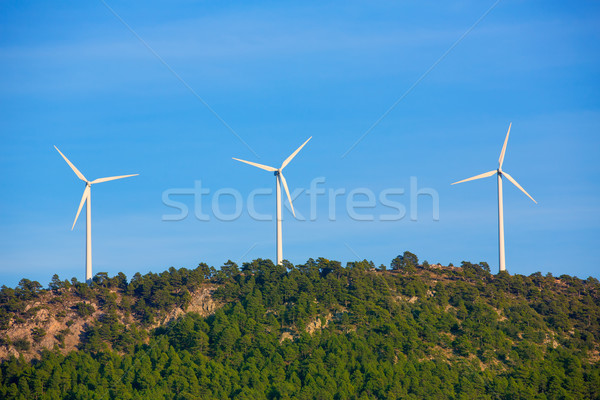 Aerogenerator windmills in the mountain top Stock photo © lunamarina