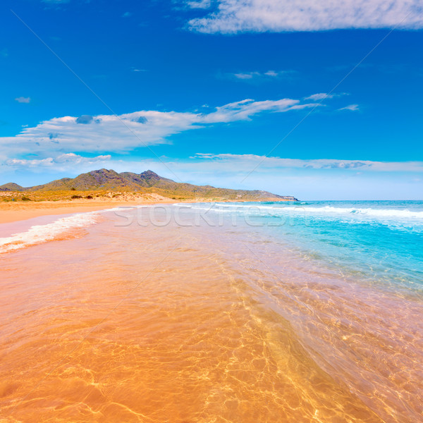 Plaży parku manga la krajobraz morza Zdjęcia stock © lunamarina