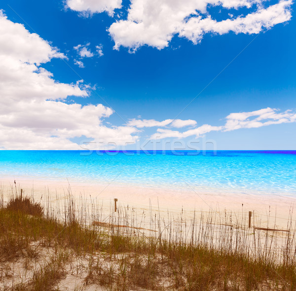 Stock photo: Destin beach in florida ar Henderson State Park