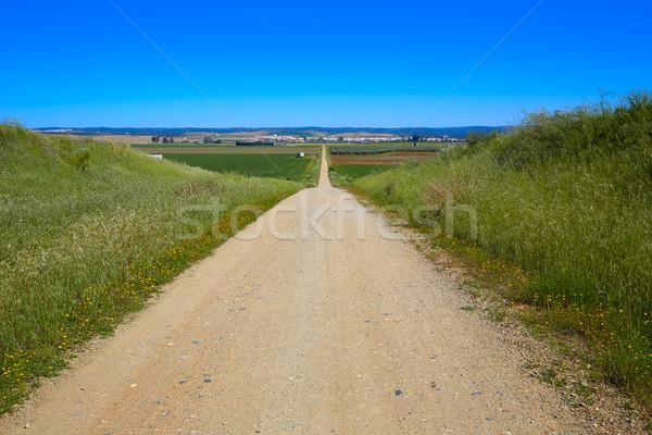 Via de la Plata way in Andalusia Spain Stock photo © lunamarina