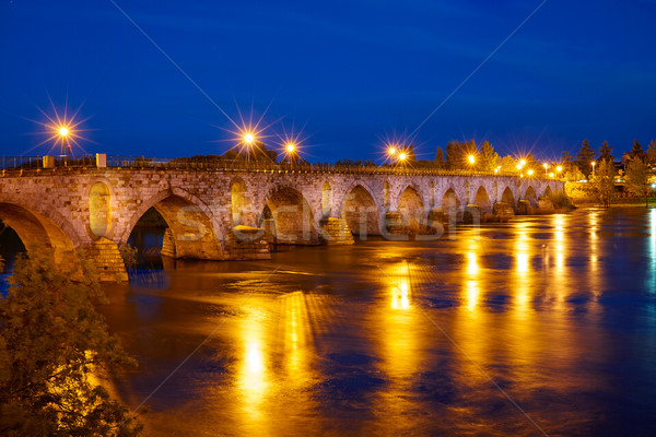Zamora Puente de Piedra stone bridge Spain Stock photo © lunamarina