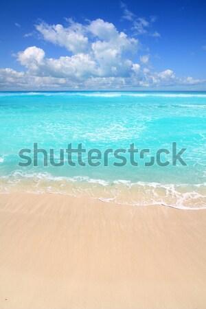 Foto stock: Caribbean · turquesa · praia · perfeito · mar