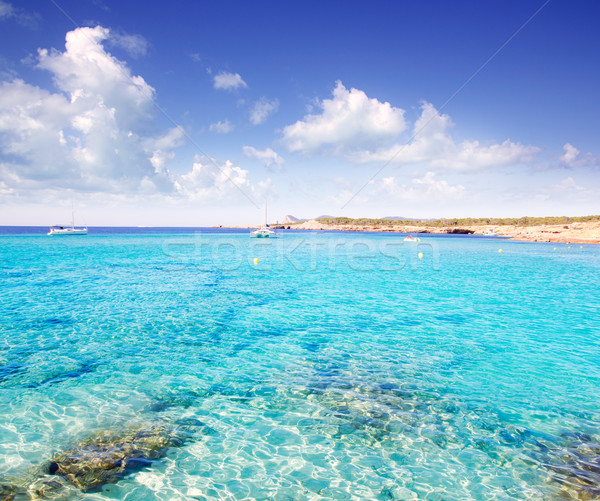 Cala Conta in Ibiza island near San Antonio Stock photo © lunamarina