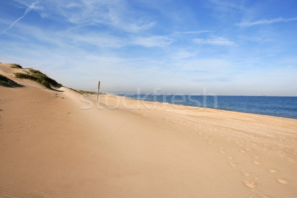 Dune on mediterranean sea coastline Stock photo © lunamarina