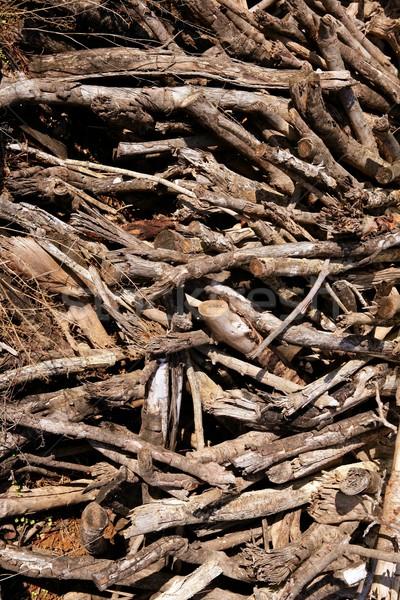 Bruin gedroogd brandhout patroon hout Stockfoto © lunamarina