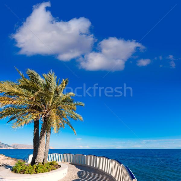 Playa típico blanco mediterráneo pueblo árbol Foto stock © lunamarina
